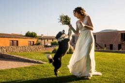 boda mas el cerda-centelles